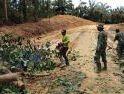 Satgas TMMD dan Warga Dusun Sekura Bersihkan Jalan dari Pohon Tumbang